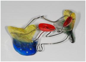 Ортодонтические пластинки одночелюстные пластинки